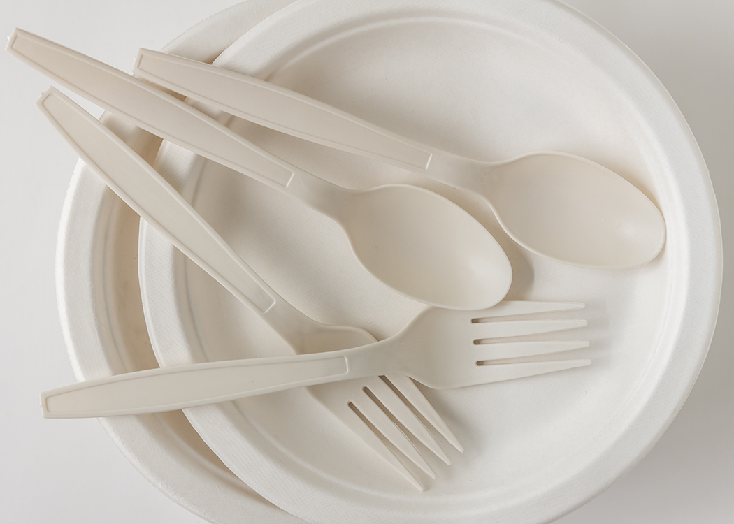 Fort Frances Disposable Plates Cutlery Takeout Containers